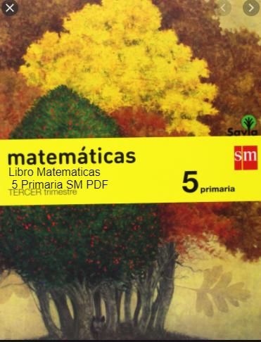 Libro Matematicas 5 Primaria SM PDF